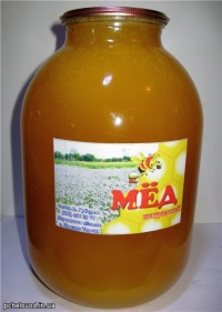 Мед натуральный, Разнотравье+Бахча, 3л